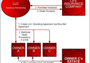 Life Insurance LLC